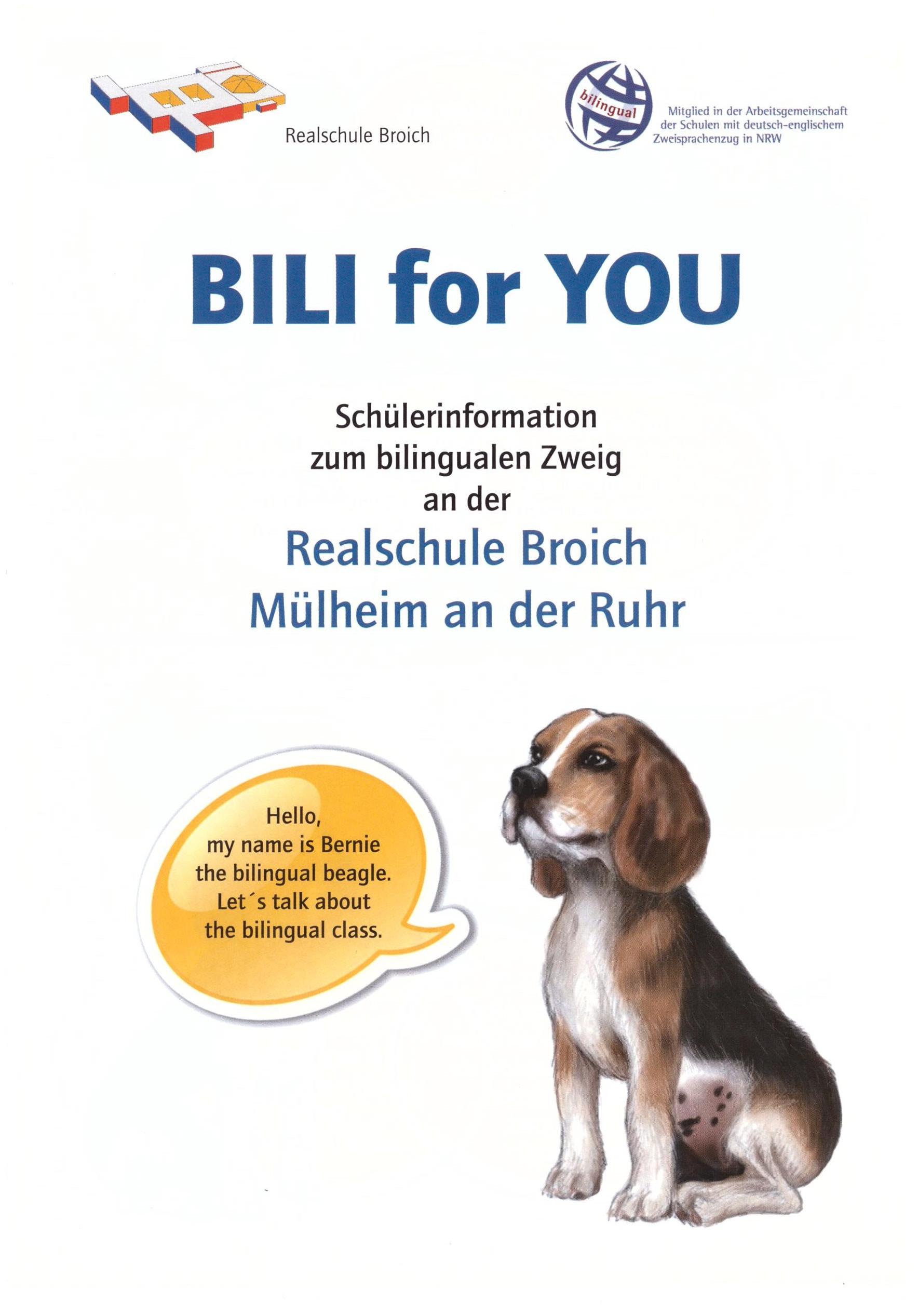 biLi Flyer1
