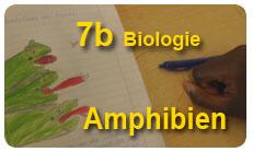 7bBiologie